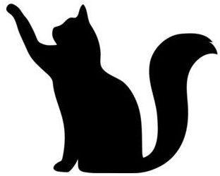 All Facts and Guides to Cats and Kittens – 21Cats.org